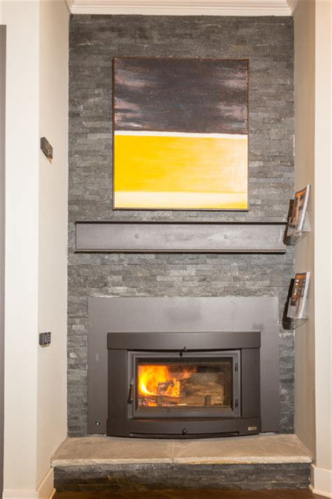 wood burning fireplace insert modern living room