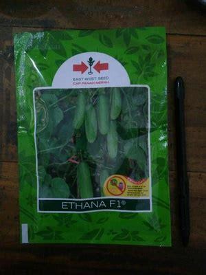 Seledri 125 Benih jual benih timun hibrida ethana f1 800 butir harga