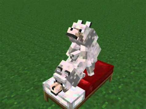 minecraft wtf animations ep  wolfs  babies youtube