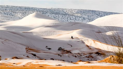 snow in sahara photos the sahara desert painted white with snow the