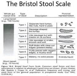 Bristol Stool Scale Explained by Bowel Movement Chart With Explanation 2017 2018 Best