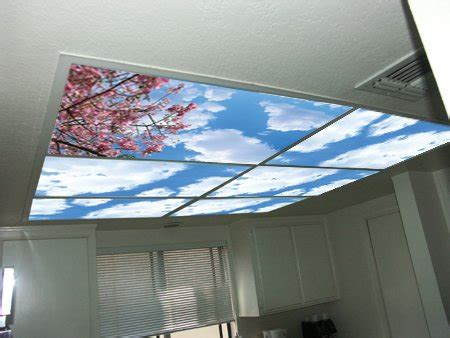 Ceiling Light Panel Covers Fluorescent Light Diffusers Bbt