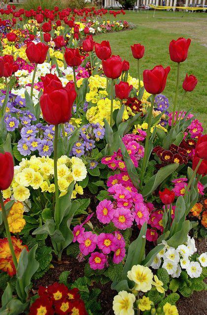 spring flower garden spring flower garden ideas garden ideas pinterest