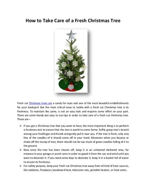 how to care for a fresh cut christmas tree in florida how to take care of a fresh tree