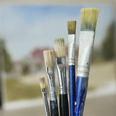 Paint Brush Hair Types which types of hairs and bristles are used in paint