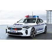 Kia Stinger GT On The Cards For Australian Police  Car