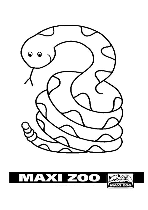 pictures to color colour in maxizoo