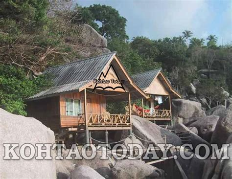 koh tao bungalows sun lord bungalows baan sairee koh tao