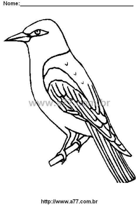 Desenho Para Colorir Tema: Pássaro. Pássaro Para Colorir.