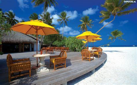 theme hotel meaning plaża palmy parasole piasek