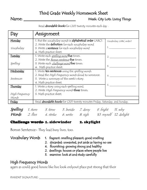 2nd Grade Homework Pages by 19 Best Images Of Title Page For Second Grade Worksheet