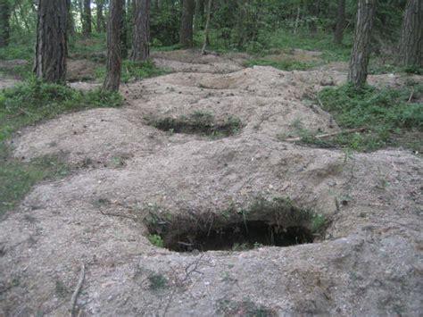 forest pit moldavite mining moldavite for me