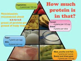 list of high protein food high protein food food list 第12页 点力图库