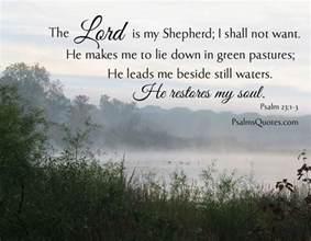 the lord is my shepherd bible verse