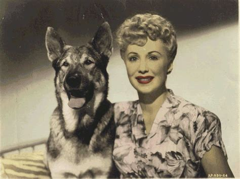 film cowboy rin tin tin the curse of the return of or one more of the worst