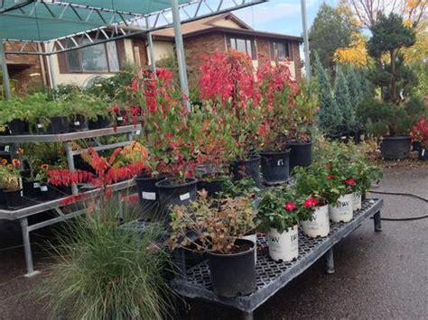 Harmony Gardens Fort Collins by Harmony Gardens Coupons In Fort Collins Landscaping