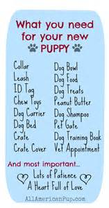 puppy needs best 25 supplies ideas on puppy supplies pet supplies and things