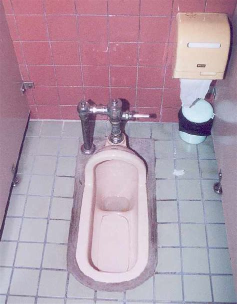 new to this forum and a japanese style kitchenknife latrine vs traditional style toilet wordreference forums