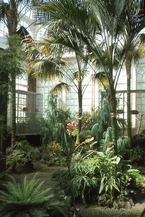 indoor butterfly garden uk ashton memorial and williamson park