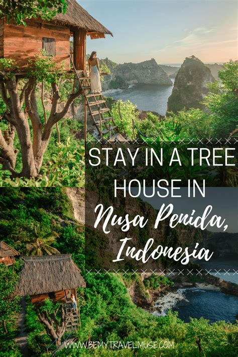 airbnb nusa penida the rumah pohon treehouse is it worth it