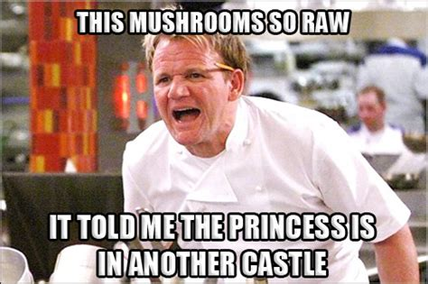 gordon ramsay angry chef meme comics  memes