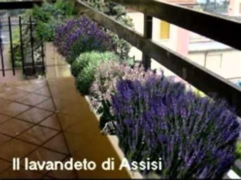 progettare terrazzo progettare giardino e terrazzo realizzare un aiuola