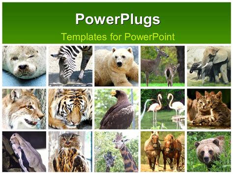 animals powerpoint template powerpoint template fifteen tiles with different animals