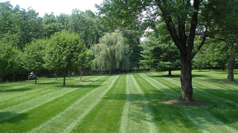 all terrain landscaping all terrain lawn service all terrain lawn service