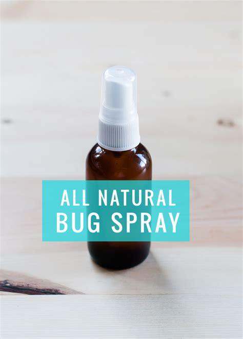 is there a spray for bed bugs diy all natural bug spray hello glow