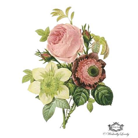 Flower Bunga Vintage Second Preloved Import vintage floral botanical illustration wickedly