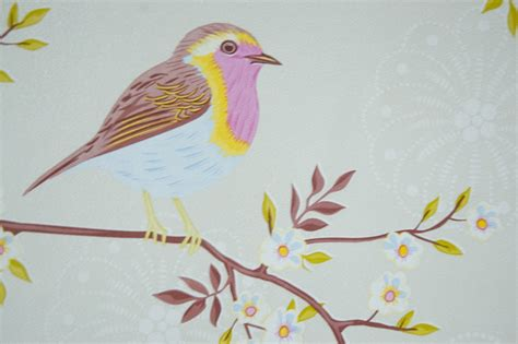 Bird Wallpaper For Walls | dream wallpaper bird wallpaper for walls