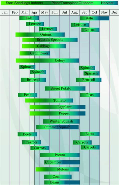garden chart zone 7 planting guide perfect sustainable garden