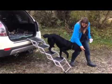 Hundere F Rs Auto Selber Bauen by Video Von Zufriedener Kundin Hundetreppen Youtube
