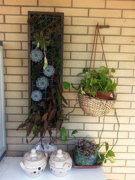 giardini in verticale piccoli giardini in verticale helpmummy