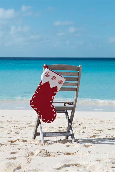 caribbean christmas photograph by kim fearheiley