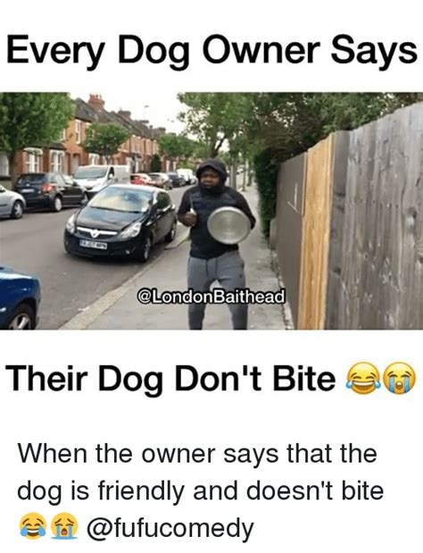 Dog Bite Meme - bad dog owner memes pictures to pin on pinterest pinsdaddy