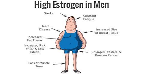 estrogen hormone effect on men dangers of estrogen men s health fitness tips