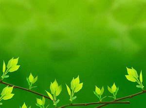 background daun hijau tanaman background gambar download