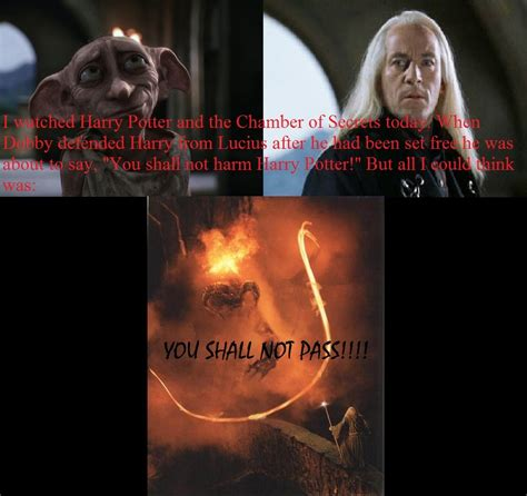 häuser in harry potter dobby you shall not pass