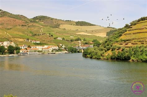 port the douro guides to wines and top vineyards books port wine and douro river road