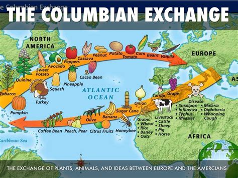 The columbian exchange the exchange of plants animals and ideas