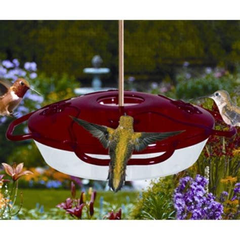 Hummingbird Feeder Wholesale flyer 4 hummingbird feeder metropolitan wholesale metropolitan wholesale