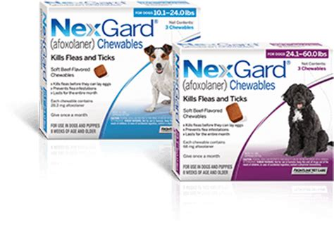 nexgard side effects nexgard 174 afoxolaner protection for your