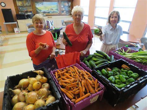 senior farm shares in swing grow food northton