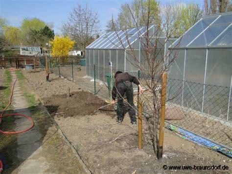 Pilze Erde Garten by Gartentagebuch 2011