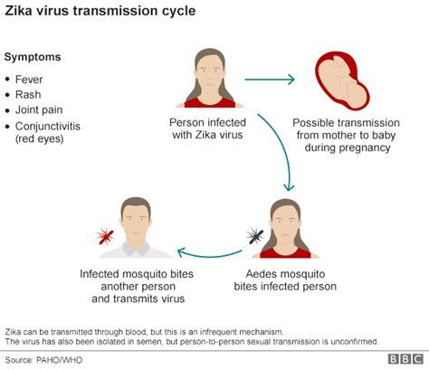 preguntas cerradas sobre el zika microbio diez preguntas sobre el virus zika
