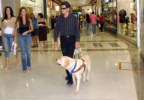 running into the a blind ã s record setting run across america books file caoguia2006 jpg wikimedia commons
