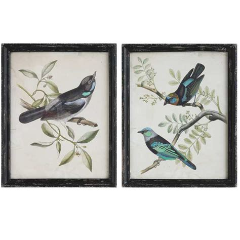 Colorful Kitchen Canisters C Framed Bird Prints Set 2
