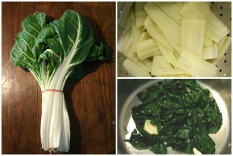 cuisiner les cotes de bettes cuire 224 blanc des c 244 tes de blettes et sauter le vert en