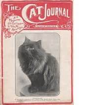 We Are The Cat Excerpt by The Way We Were Excerpts From The 1959 Cfa Yearbook Part 3